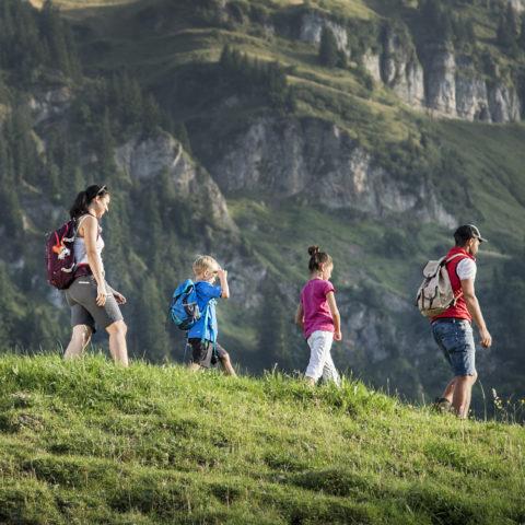 Wandern: Aktivitäten im Sommer in Schetteregg